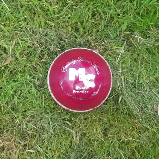 Premier-Silver-Red-Ball